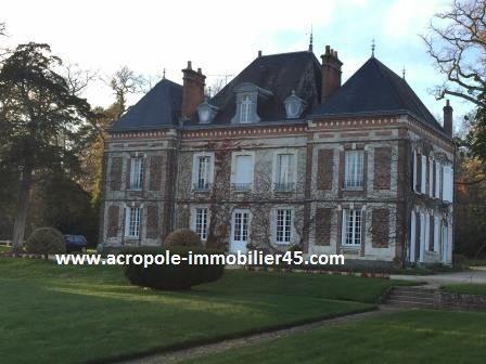 Vente Maison 10 chambres - 25 pièces - 375 m² à Gien (45500)