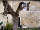4 pièces Saint Leon Sur L'Isle Abords village 86 m² Maison