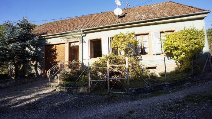 Steige  75 m² Maison  3 pièces
