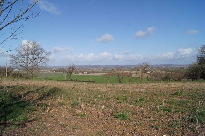 photo de Terrain constructible à 10 kms de Castelsarrasin.