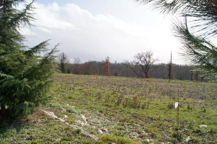 photo de Grand terrain constructible à 10 kms de Castelsarrasin.