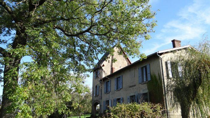 Vente Maison 9 chambres - 11 pièces - 250 m² (69700)