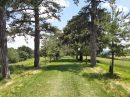 Property <b>7 ha 94 a </b> Haute-Garonne