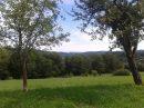 Property <b>1 ha 50 a </b> Haute-Vienne