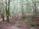 Property <b>2 ha 20 a </b> Corrèze