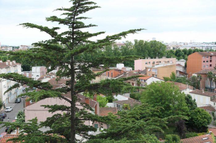 Vente Appartement 4 chambres - 6 pièces - 158 m² à Toulouse (31000)