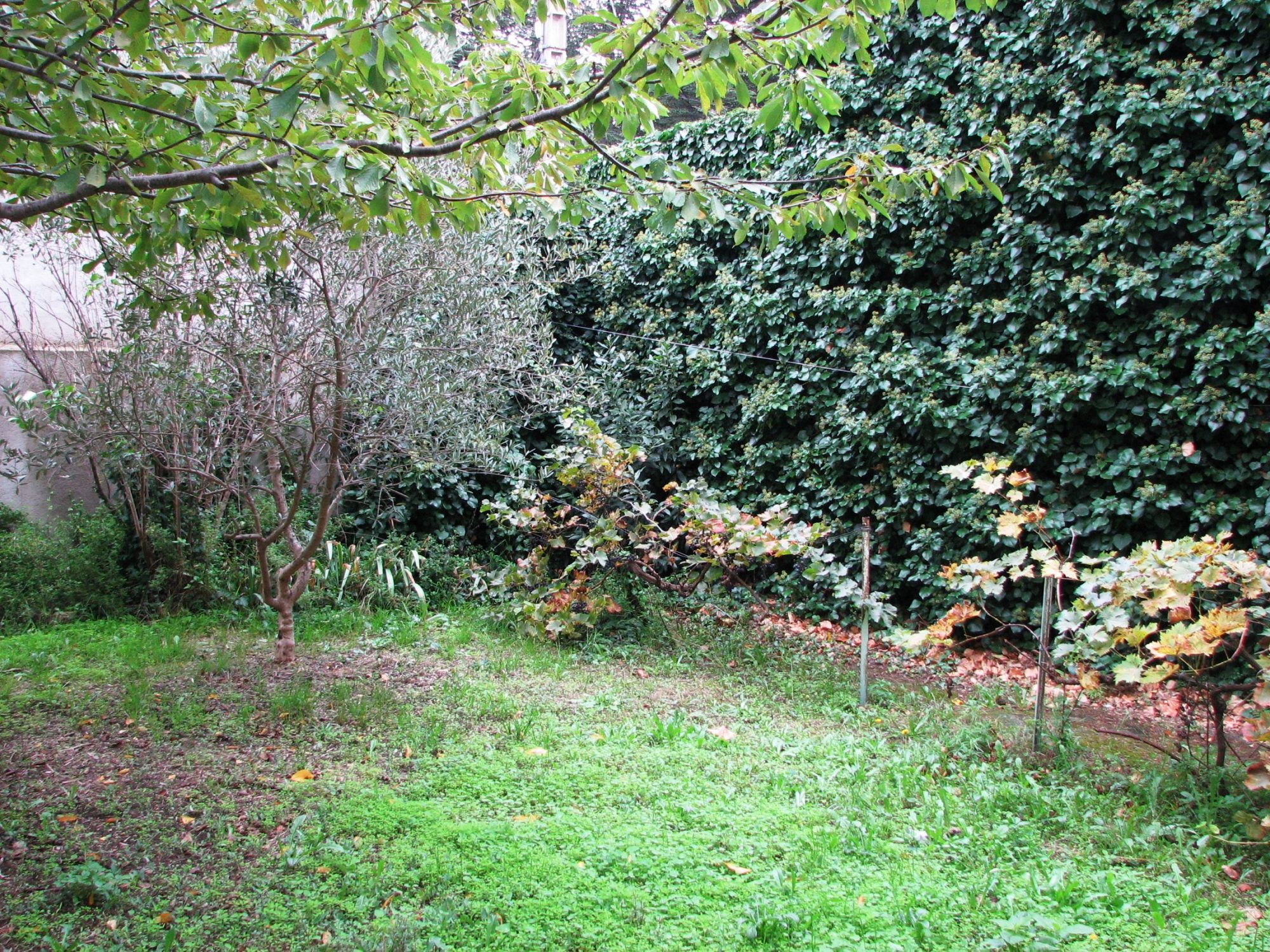 Maison de village avec jardin terrasse estagel agence for Jardin immobilier
