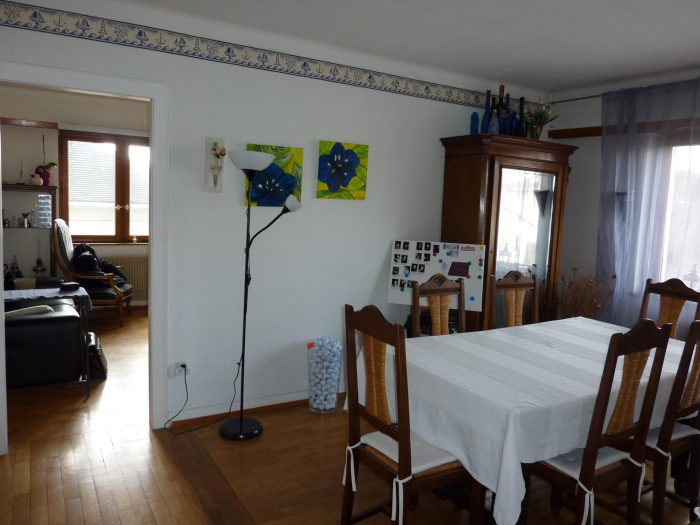 Maison  Mittelhausbergen  10 pièces 250 m²