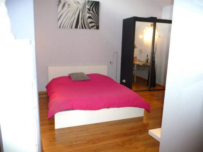 5 pièces 292 m² Maison  Labège