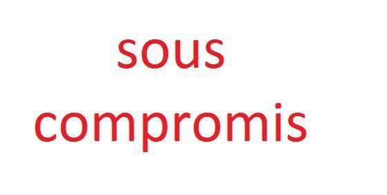 Vente Maison 6 chambres - 10 pièces - 273 m² à Les Contamines-Montjoie (74170)