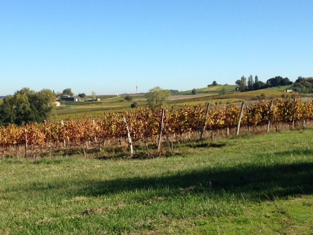 Propriété <b>15 ha </b> Gironde (33)