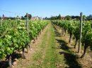 Propriété <b>4 ha 22 a </b> Dordogne