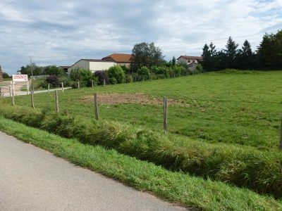 Propriété <b>10 ha </b> Loire (42)