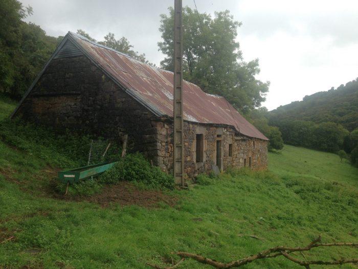 Propriété <b>17 ha 90 a </b> Cantal (15)
