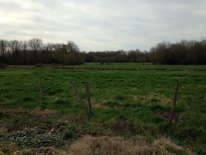 Propriété <b>6 ha 72 a </b> Charente-Maritime (17)