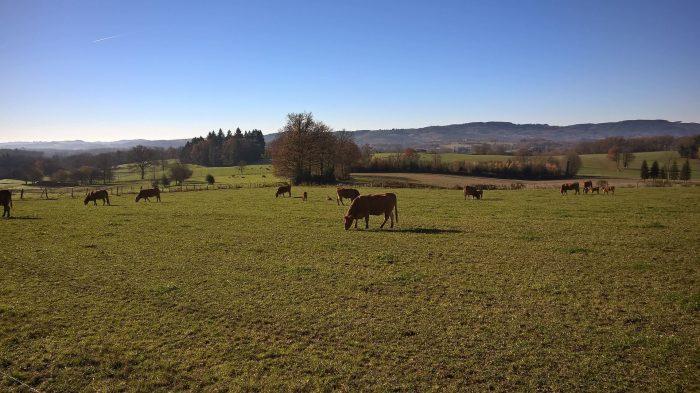 Propriété 130 ha  Creuse (23)