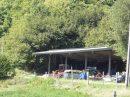Propriété <b>12 ha 50 a </b> Haute-Vienne (87)