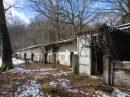 Propriété <b>11 ha </b> Hautes-Pyrénées