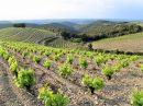 Propriété <b>5 ha </b> Hérault