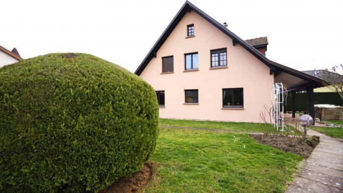 160 m² 6 pièces  Maison Goxwiller