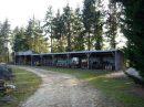 Composante d'habitation <b>1 ha 47 a </b> Loir-et-Cher