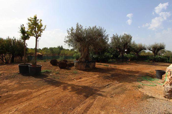 Terrain pret a construire 5mn palma marratxi vente terrain for Pret pour terrain seul