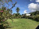 Maison  Papara Tahiti 130 m² 3 pièces