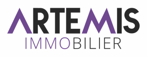 Agence immobilière Artemis Immobilier Saône