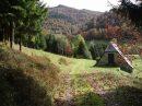 Propriété <b>18 ha </b> Hautes-Pyrénées