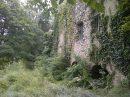 Propriété <b>4 ha 50 a </b> Pyrénées-Orientales