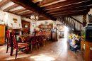 Maison 240 m² Girolles  7 pièces